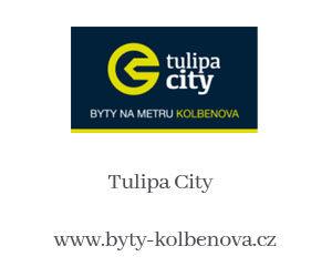 www.byty-kolbenova.cz